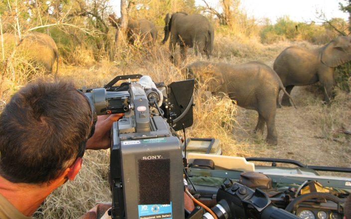 Événementiel - Reportage Tanzanie // Alive Tournage